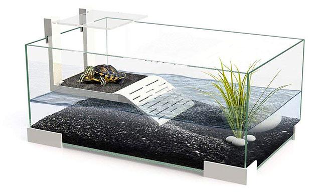 Vasche e laghetti per tartarughe guida all 39 acquisto e 5 for Vasca esterna per tartarughe